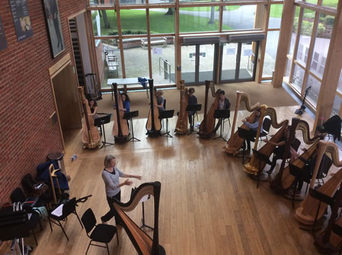 2017 Teenage Harp Course Orchestral Class with Ruth